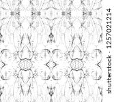 geometric black and white... | Shutterstock . vector #1257021214