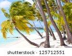 perfect tropical beach at bora...   Shutterstock . vector #125712551