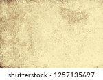 light brown background | Shutterstock . vector #1257135697