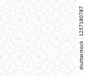 modern abstract geometric... | Shutterstock .eps vector #1257180787