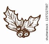 mistletoe traditional plant...   Shutterstock .eps vector #1257227587