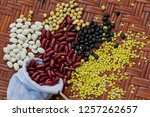 a selection of legumes | Shutterstock . vector #1257262657