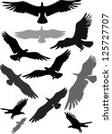 set of silhouettes of flying... | Shutterstock .eps vector #125727707