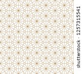 beautiful seamless pattern... | Shutterstock .eps vector #1257315541