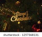 word merry christmas celebrate... | Shutterstock . vector #1257368131