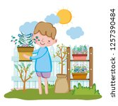 boy lifting houseplant with... | Shutterstock .eps vector #1257390484