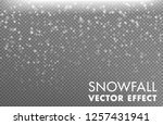 snow on the transparent...   Shutterstock .eps vector #1257431941