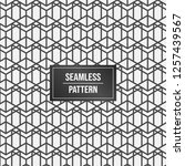 geometric pattern background.... | Shutterstock .eps vector #1257439567