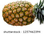 one ripe whole large pineapple... | Shutterstock . vector #1257462394