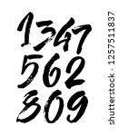 vector set of calligraphic...   Shutterstock .eps vector #1257511837