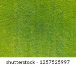 aerial view of a large patch of ... | Shutterstock . vector #1257525997