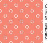 peachy tiny daisy coral flower...   Shutterstock .eps vector #1257533197