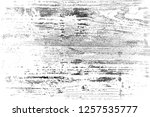 abstract background. monochrome ... | Shutterstock . vector #1257535777