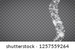 winter frame with white... | Shutterstock .eps vector #1257559264