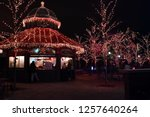 trees lit up for zoo lights ... | Shutterstock . vector #1257640264