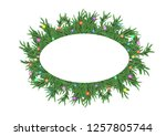 christmas 3d pine tree branches ... | Shutterstock . vector #1257805744