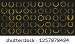 Set Of 50 Golden Vector Laurel...