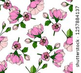 vector pink rosa canina. floral ... | Shutterstock .eps vector #1257884137