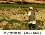 the farmer goes to work in... | Shutterstock . vector #1257918211