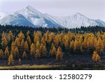 autumnal landscape in the north ... | Shutterstock . vector #12580279