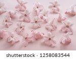 hyacinth pink surprise dutch...   Shutterstock . vector #1258083544