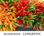 Small Peppers Are Red  Green...