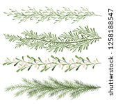 set of christmas plants. sprigs ... | Shutterstock .eps vector #1258188547