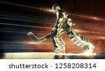 bronze sculpture of ice hockey...   Shutterstock . vector #1258208314