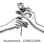 woman's hand give red rose into ... | Shutterstock . vector #1258212304