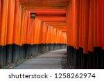 Stock photo the thousand torii gates of fushimi inari shrine an important shinto shrine located in southern 1258262974
