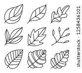 leaves icon set. leaves logo... | Shutterstock .eps vector #1258436101