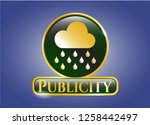 shiny emblem with rain icon... | Shutterstock .eps vector #1258442497