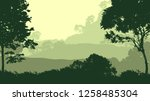 2d illustration. trees in the... | Shutterstock . vector #1258485304