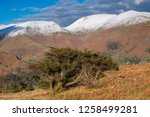 helm crag is a fell in the... | Shutterstock . vector #1258499281