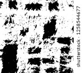 vector grunge overlay texture.... | Shutterstock .eps vector #1258544677