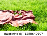 picnic blanket with apples on... | Shutterstock . vector #1258640107
