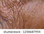skin old texture  wilted skin ... | Shutterstock . vector #1258687954