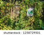 poison ivy sign posted on wire... | Shutterstock . vector #1258729501