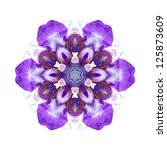 Flower Mandala On White...