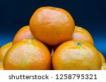 tangerine is the fruit of the... | Shutterstock . vector #1258795321