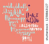 bold calligraphic playful font... | Shutterstock .eps vector #1258863127