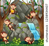 wild monkey in nature... | Shutterstock .eps vector #1258934407