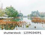 hangzhou china 9 december  2018 ... | Shutterstock . vector #1259034091
