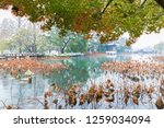 hangzhou china 9 december  2018 ... | Shutterstock . vector #1259034094