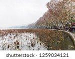 hangzhou china 9 december  2018 ... | Shutterstock . vector #1259034121