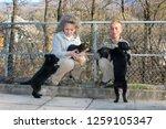 lugano  switzerland   19... | Shutterstock . vector #1259105347
