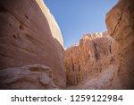 wadi watir  sinai   egypt   may ... | Shutterstock . vector #1259122984