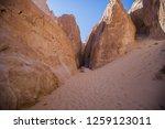 wadi watir  sinai   egypt   may ... | Shutterstock . vector #1259123011