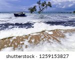 the waves of the sea produce... | Shutterstock . vector #1259153827