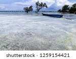 the waves of the sea produce... | Shutterstock . vector #1259154421